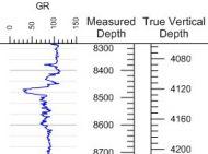 true vertical depth